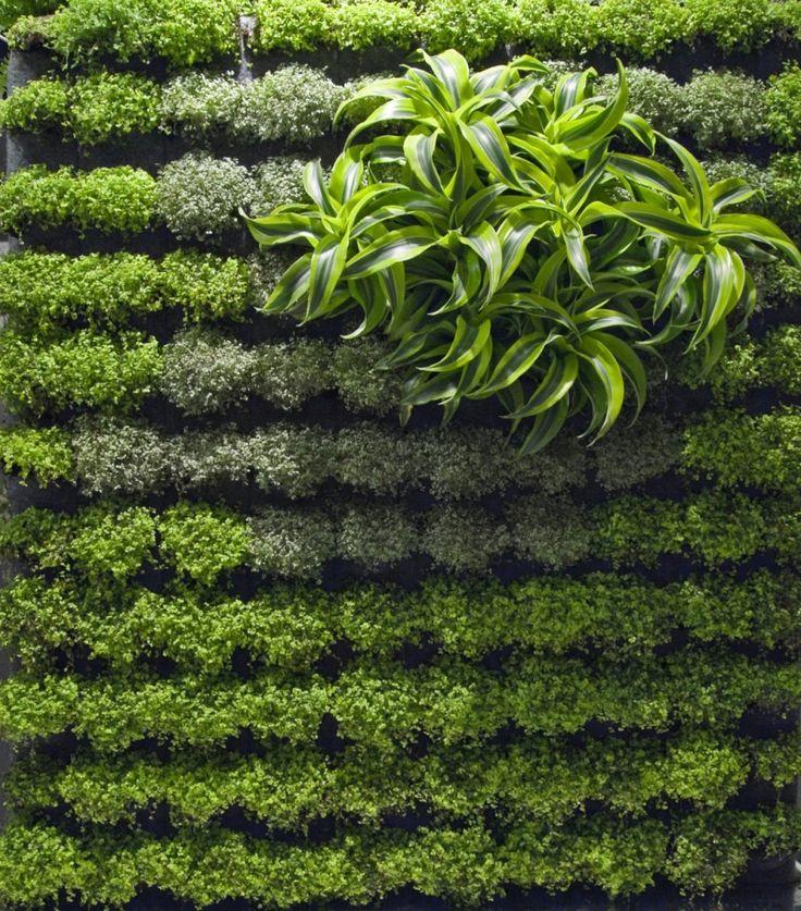 Wall Garden Design Aralsa Com