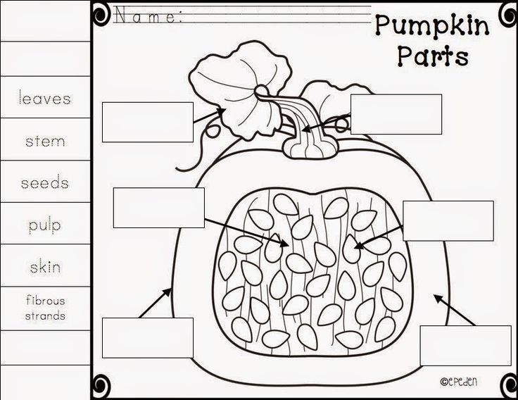 A Neighborhood Kindergarten : Pumpkin Patch CCSS Math