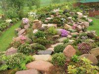 Rockery plants Rock garden ideas | rock gardening ...