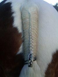 17 Best ideas about Tail Braids on Pinterest   Braid ...