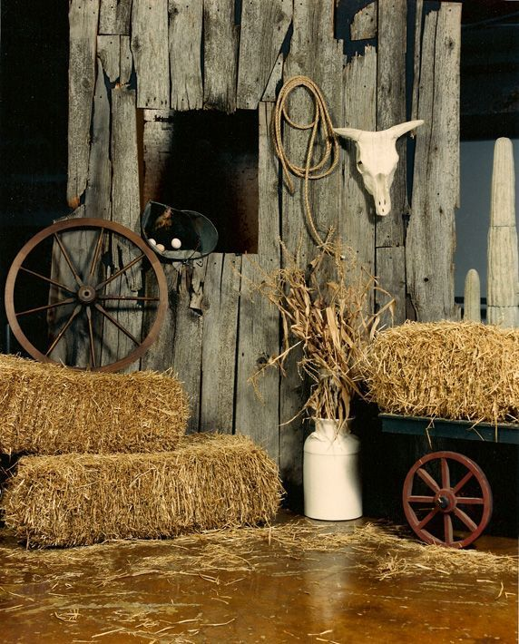 Western Theme Party Props  country and western