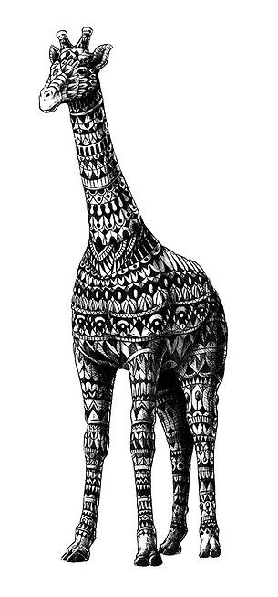Giraffe By BioWorkZ Zentangle Animals Pinterest Giraffes