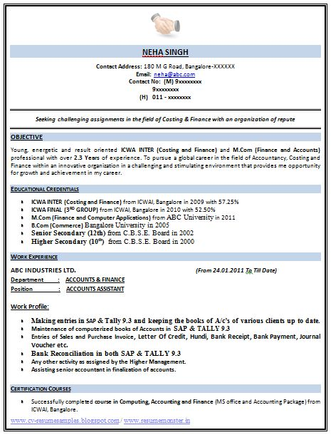 Resume Example Pdf Free Download Sample Template