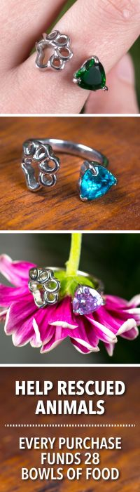 25+ best ideas about Paw Print Nails on Pinterest | Animal ...