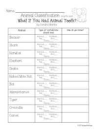 Classifying Animals Activities 5th Grade