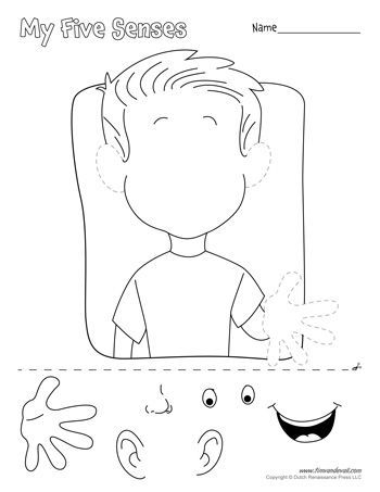 17+ best ideas about Five Senses Preschool on Pinterest