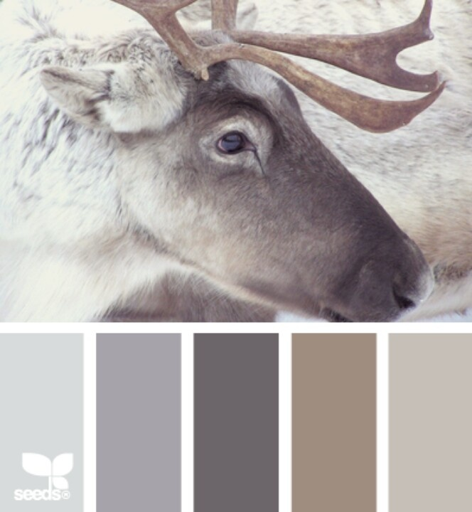 1000 ideas about Neutral Color Palettes on Pinterest  Coastal Homes Neutral Colors and Color