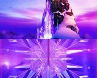 7 best images about Elsa's Ice Castle! on Pinterest ...