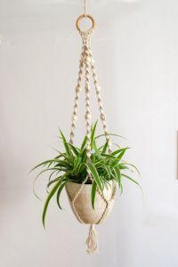 25+ best ideas about Macrame Plant Hangers on Pinterest
