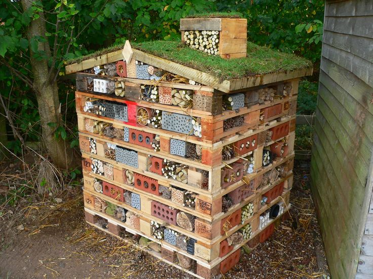 25 Best Ideas About Bug Hotel On Pinterest Insect Hotel House