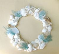 109 best images about Shells on Pinterest | Conch shells ...