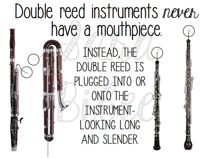 1000+ images about Instruments and Orchestra on Pinterest