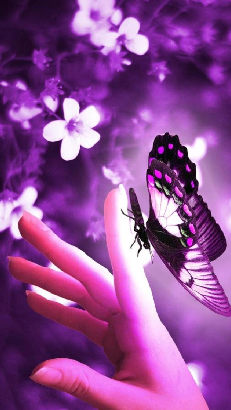 Pink Ribbon Iphone Wallpaper Purple Butterfly Purple Passion Pinterest The Ribbon