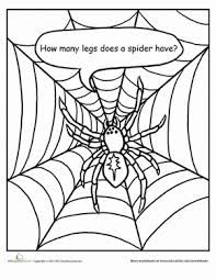 17 Best images about preschool spiders and insects on