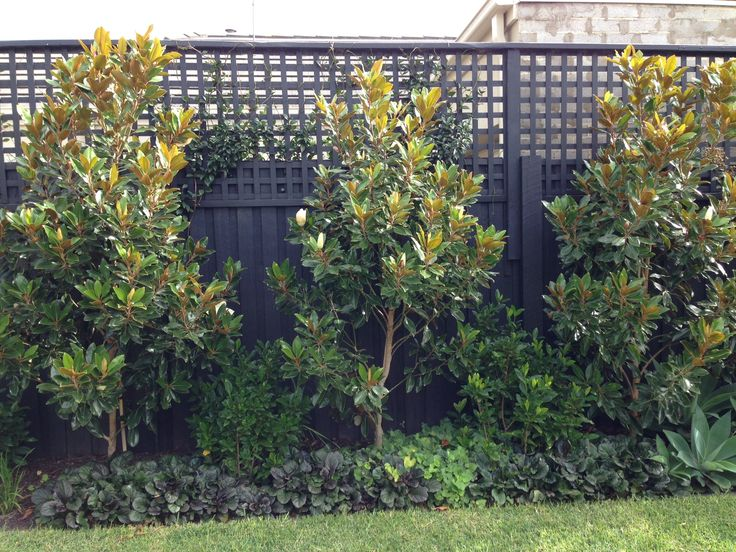 449 Best Images About Partitions Privacy Fences On Pinterest