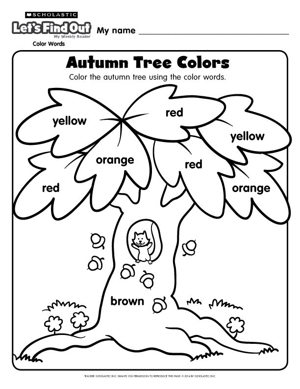 17 Best images about Scholastic Early Childhood Ideas on