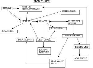Flow Diagrams  Rickson Gracie's Jiu Jitsu Secret | The o