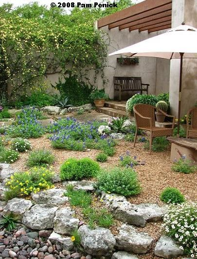 simple xeriscape design amazing