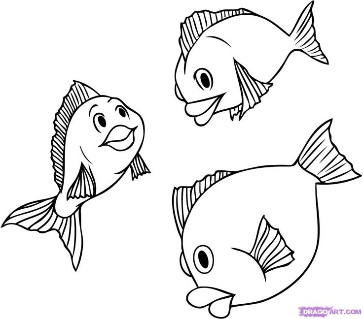 Best 25+ How to draw fish ideas on Pinterest