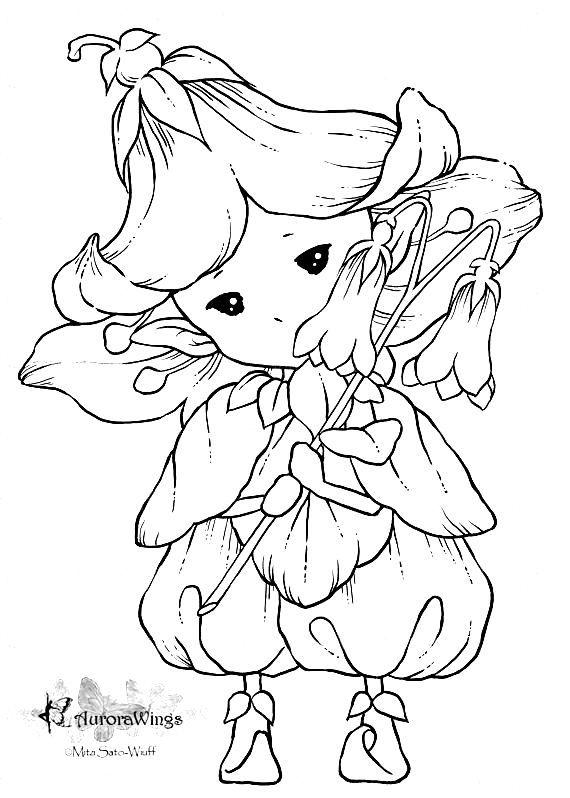 Aurora Wings