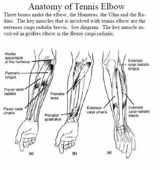 17 Best images about Elbow and Wrist Tx on Pinterest