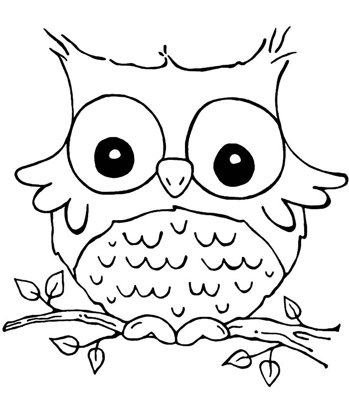 61 best images about Owl Coloring Pages on Pinterest