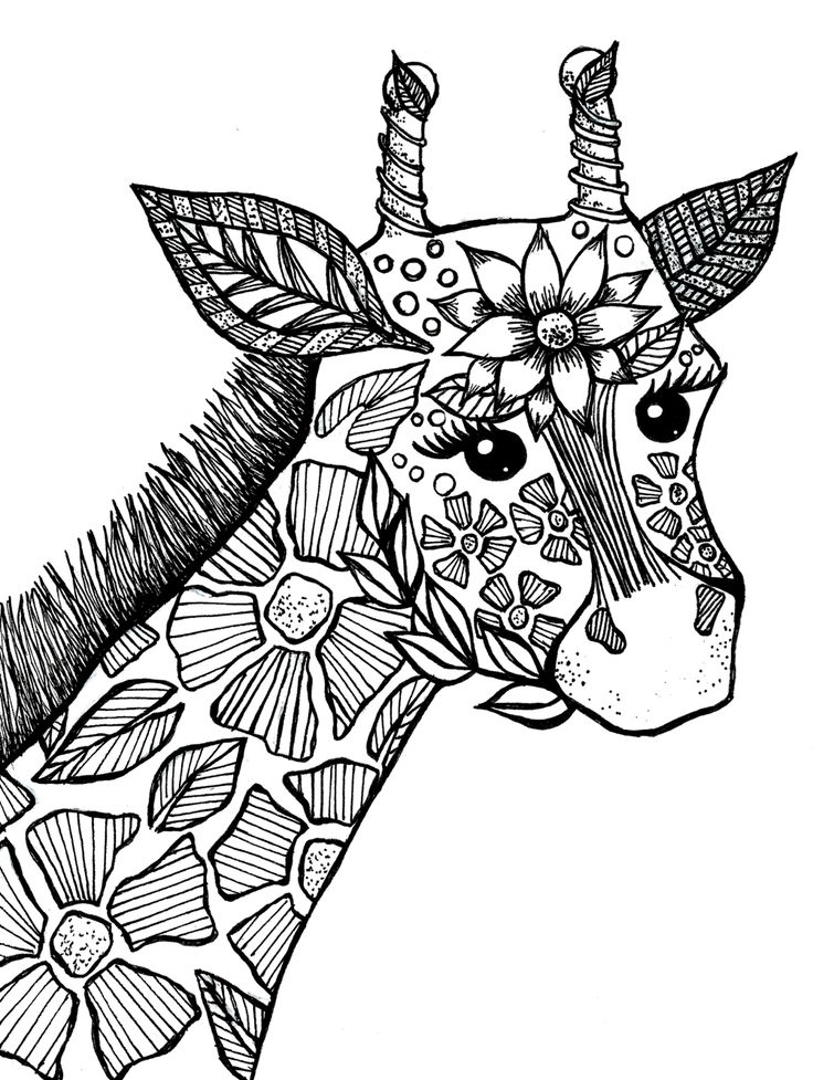 1000+ ideas about Adult Colouring Pages on Pinterest
