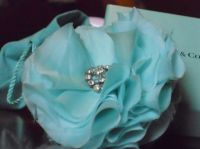 Tiffany Blue Flower | My Blue | Pinterest | We, iPad and ...