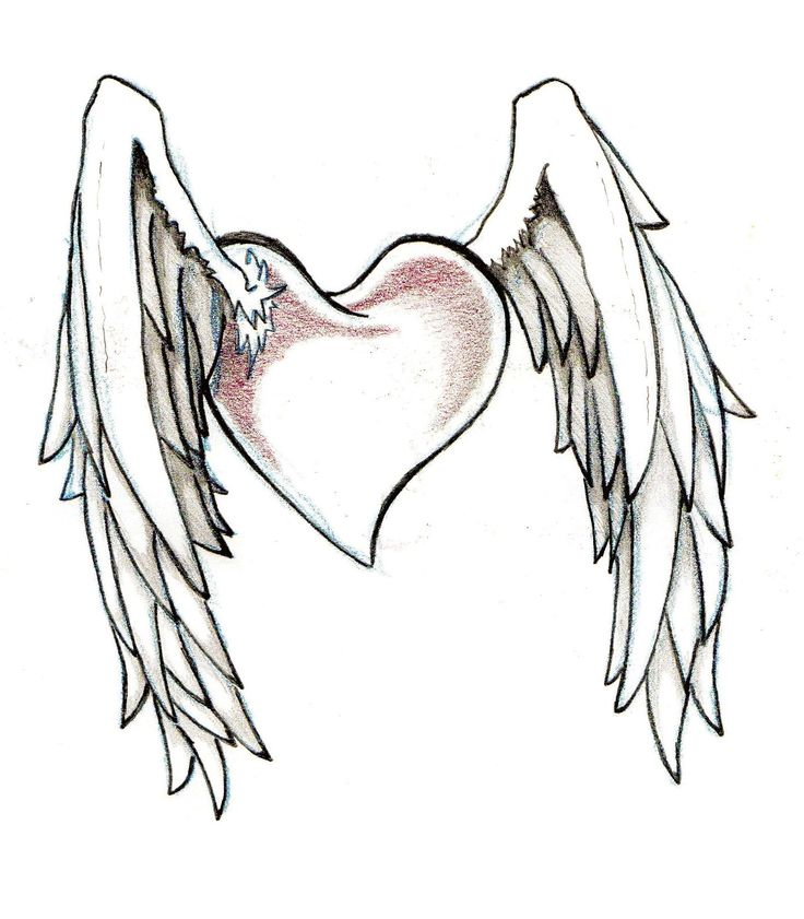 17 Best Ideas About Heart Wings Tattoo On Pinterest Pet