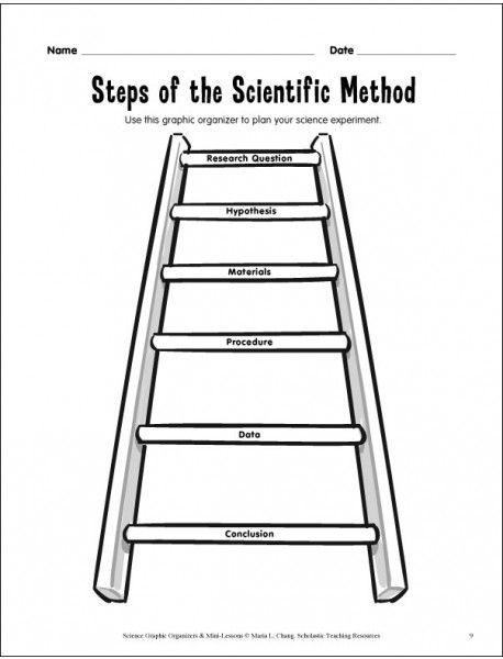 17 Best images about Scientific Method on Pinterest