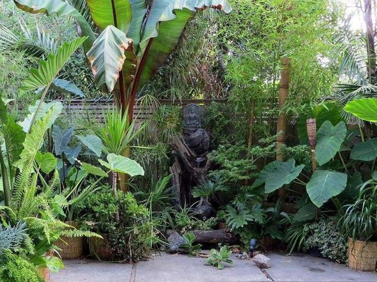 25 Best Ideas About Tropical Garden Design On Pinterest