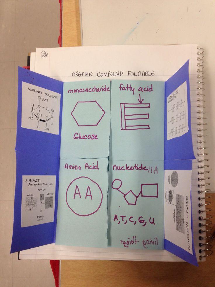 Organic Compounds Foldable Foldable My Biology Class