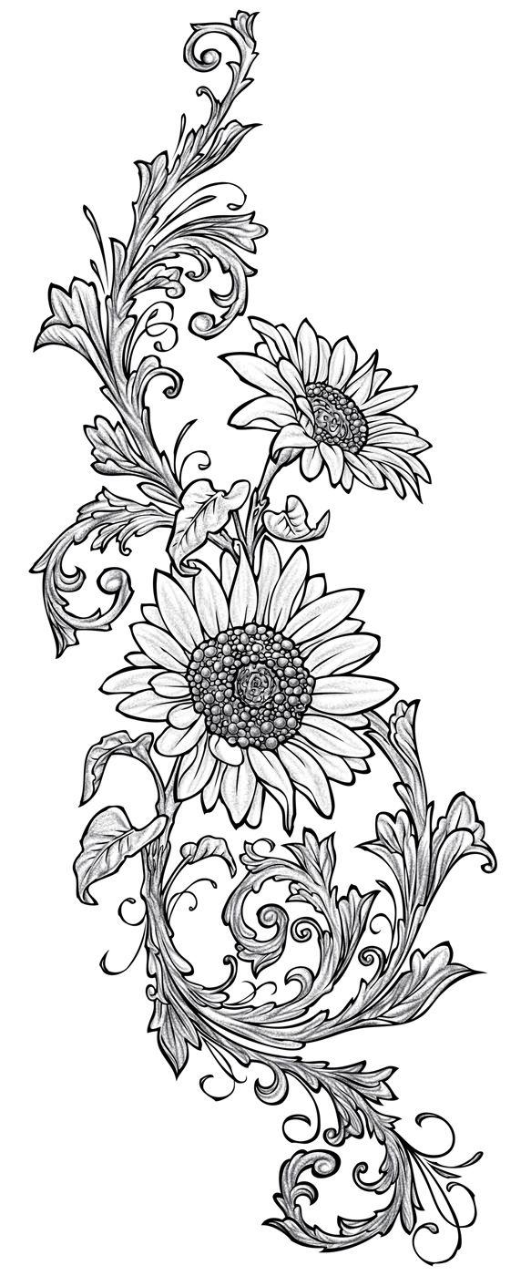 25+ best ideas about Sunflower drawing on Pinterest