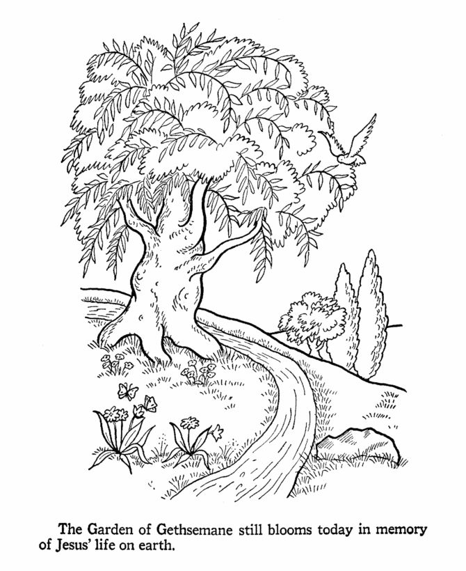 119 best ideas about Coloring Pages for Peds Ward on