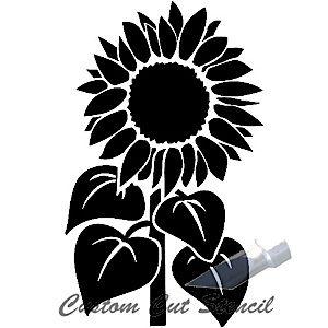 sunflower stem 1s flourish flower