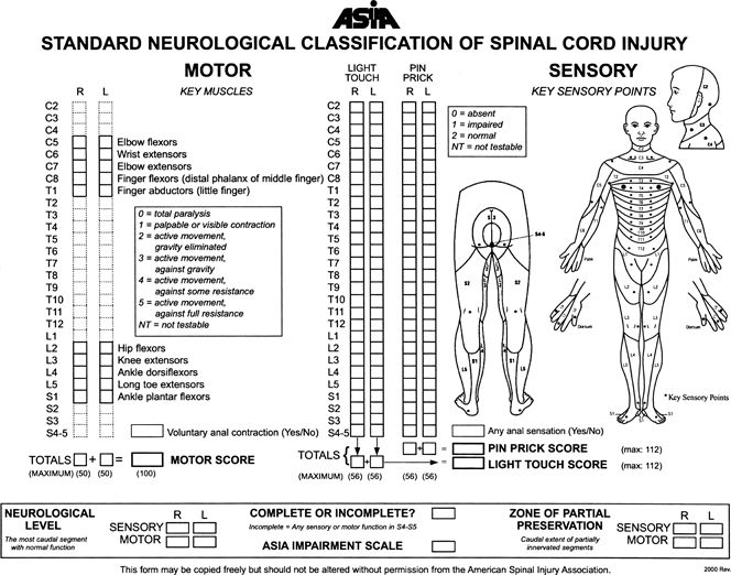 SCI Standard Neurologic Classification of Spinal Cord