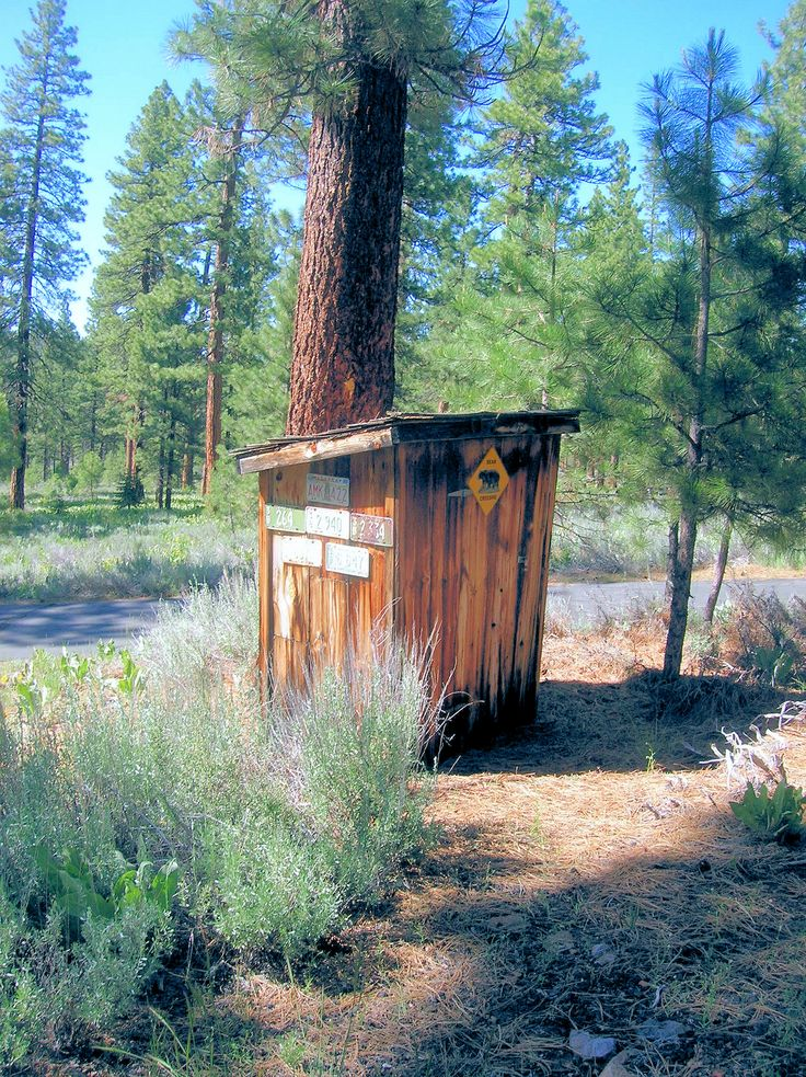 1000 images about Tahoe Timber Trails on Pinterest