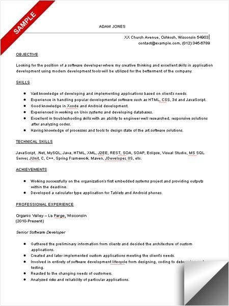 sample computer software resume