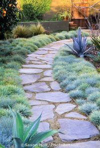 25+ Best Ideas about Flagstone Path on Pinterest ...