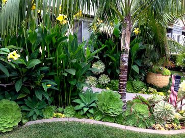 269 Best Images About Tropical Landscape Ideas On Pinterest Bali