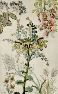 25+ best ideas about Antique wallpaper on Pinterest ...