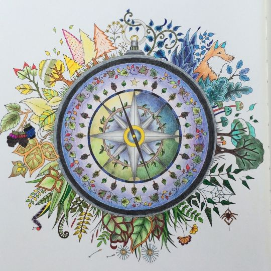 655 Best Images About Compass Rose On Pinterest Map