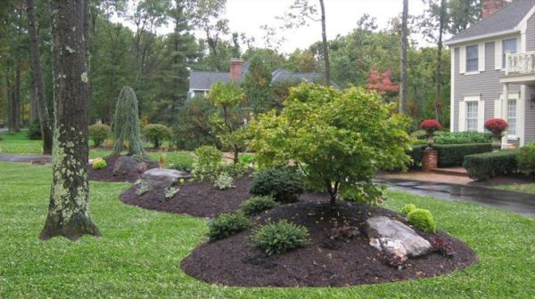bermed front yard planting island