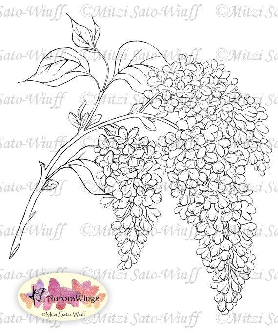 1000+ images about Stempels bloemen on Pinterest
