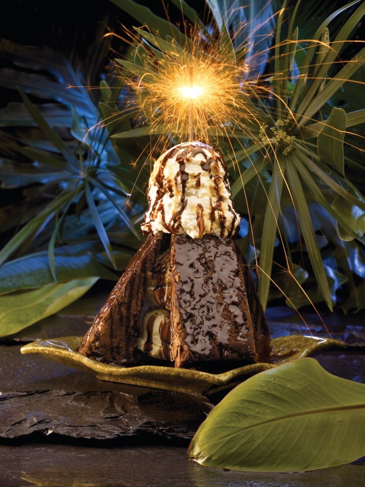 17 Best Images About The Rainforest Cafe On Pinterest