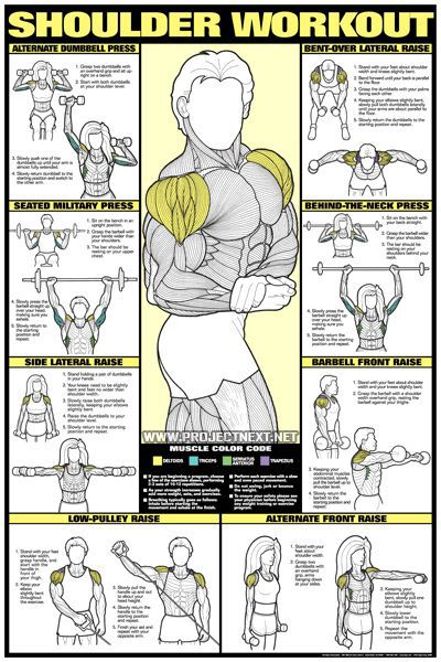 17 best ideas about Dumbbell Back Workout on Pinterest