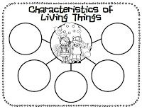 1000+ images about Characteristics of living things