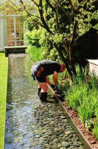15+ best ideas about Duck Pond on Pinterest | Dog pond ...