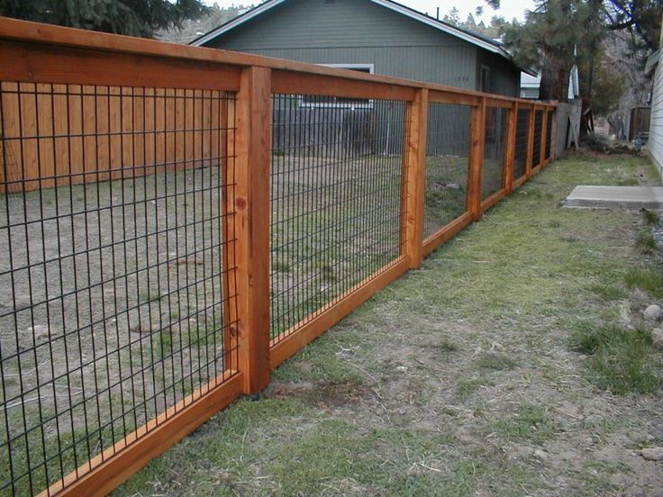 25 Best Ideas About Chicken Wire Fence On Pinterest Chicken