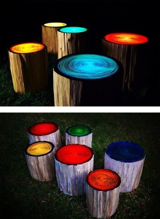 The 43 Best Images About Glow In The Dark Gardening On Pinterest